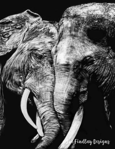 Elephant-Embrace_850px
